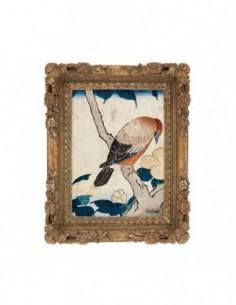 Aquarellum Junior Oiseaux du Paradis