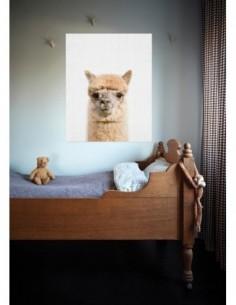 CARAMEL ET CIE Cartable maternelle Les Lions  8323/cartMINI012